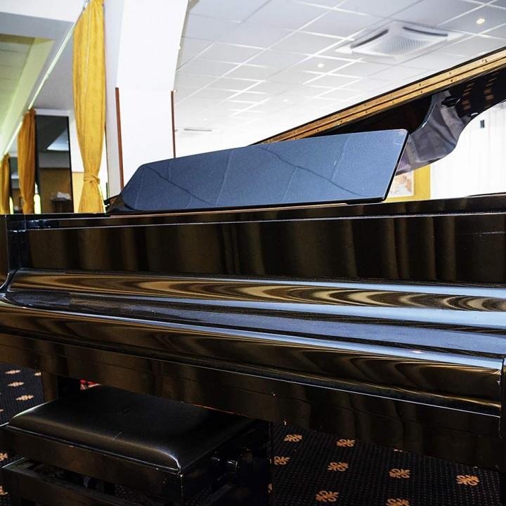 rosadoro-pianoforte-interno